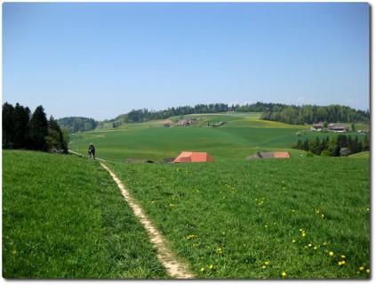 Trail zwischen der Schaukäserei und der Lueg