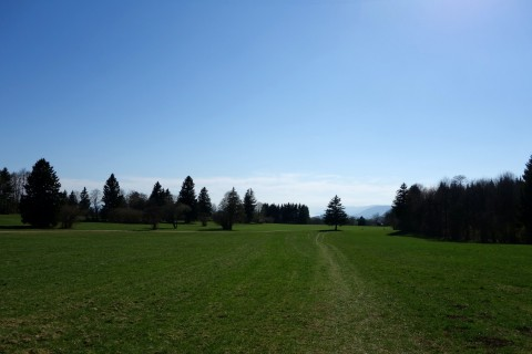 Jurawiesenwege bei Magglingen