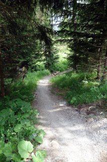Trail Barmbrüesch - Malix - Parpan