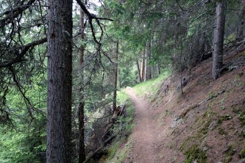 Trail unterhalb von Masseré