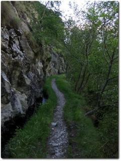 Gorperi Suon - Felswand, Suone, Trail, Bäume und Abgrund