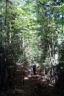 Aufstieg bei Molards sur le Campe