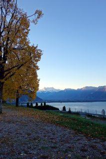 Rastplatz Montreux - Morgenstimmung 02