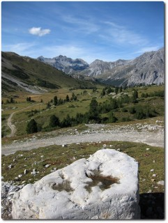 Blick vom Döss dal Termel in Richtung Jufplaun