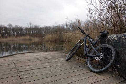 Teich im Bois des Mouilles 1