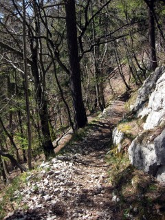 Trail Mont Raimeux - Moutier