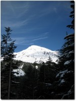 Mount Rainier - Nahe von Paradise