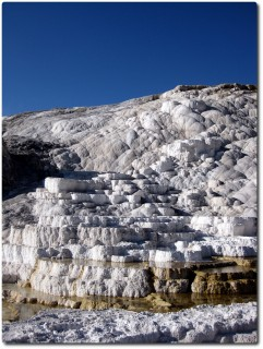 Mammoth Hot Springs - Weiss