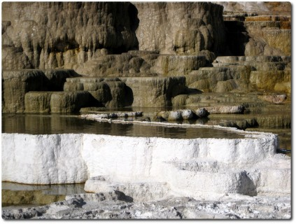 Mammoth Hot Springs - Terrassen