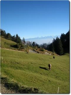 Naturerlebnis mit dem Mountainbike (I)