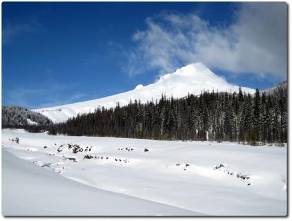 Mount Hood von Nahe