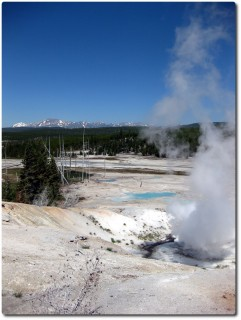 Norris Geyser Basin - Black Growler
