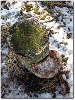 ...der magnetisch am Baum montiert wird!