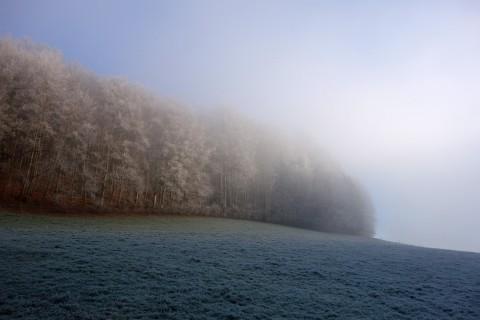 Nebelgrenze bei Rägehaule