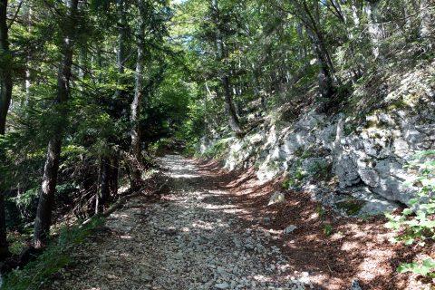 Unfahrbare alter Weg zur Schauenburg