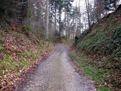 Alter Hohlweg bei Oberdorf