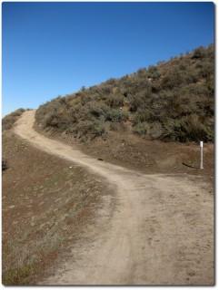 Ollason Trail - Dirt Road