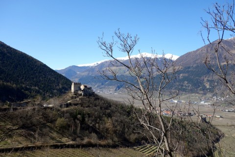 Montani Burgen