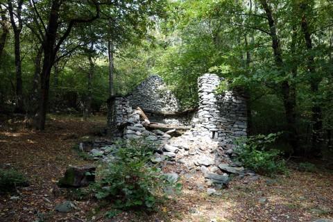 Ruine und Kastanienwälder