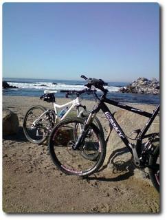 Monterey - Ocean View Boulevard