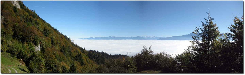 Endlich aus dem Wald und Blick auf das Nebelmeer