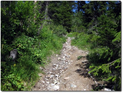 Steiles Schotterstück Trail Alp Stätz - Parpan