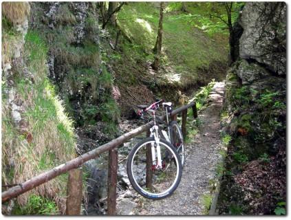 Enger Trail durch den Schofgraben
