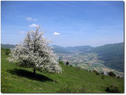 Grandiose Ausblicke auf das Mittelland