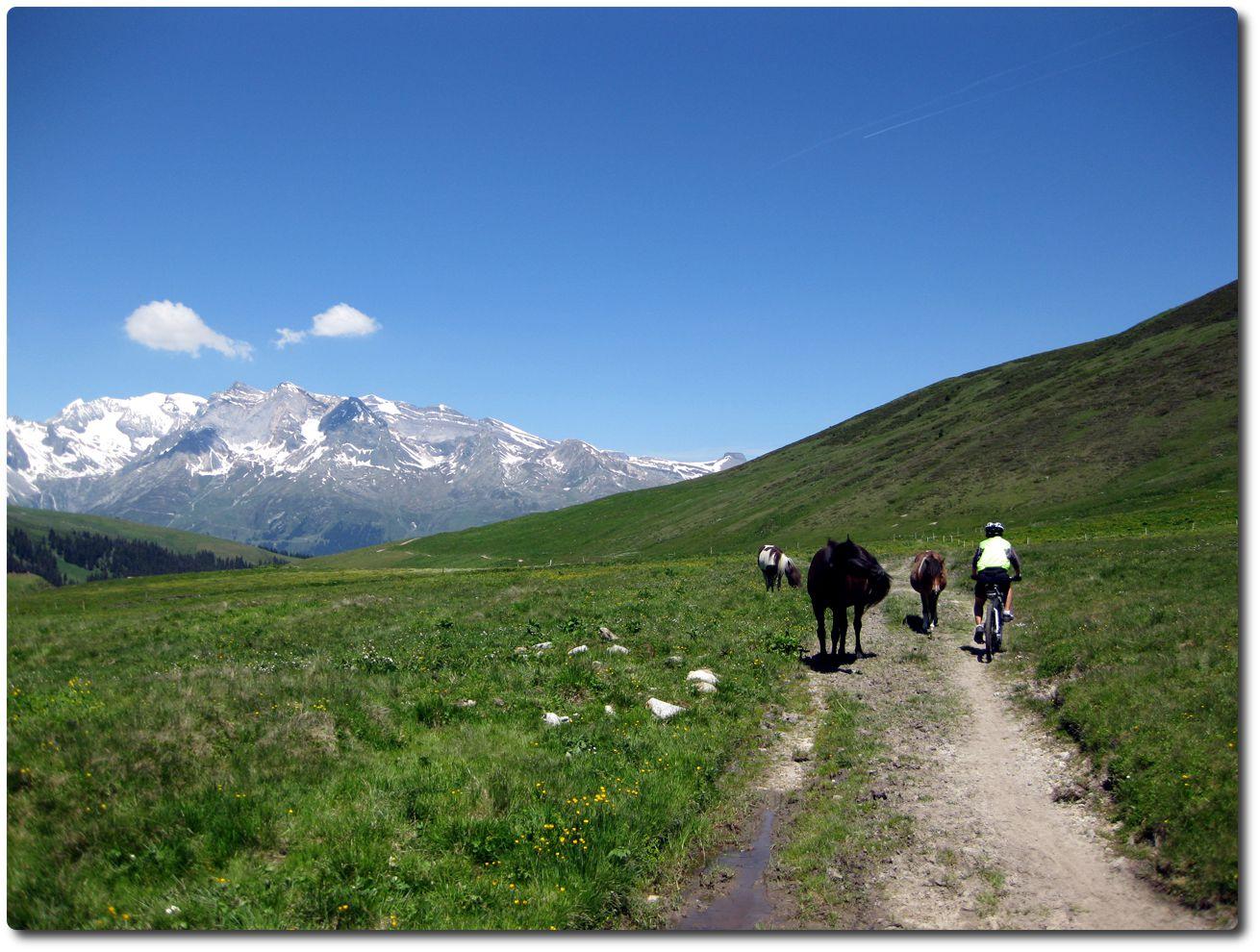 Hornymatch Trail Bieten Einsame Frauen