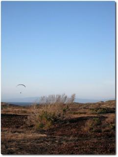 Paraglider über den Dünen der Monterey Bay