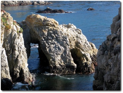 Point Lobos - Pelican Point