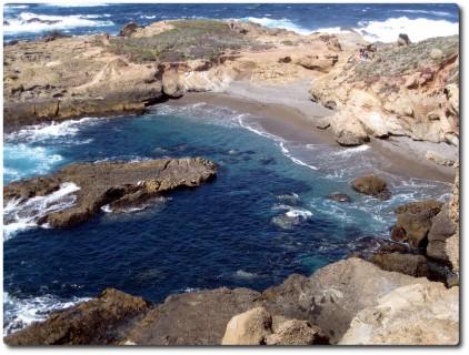 Point Lobos - Bucht mit Hafenrobben