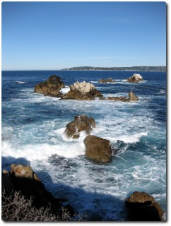 Point Lobos - Cannery Point