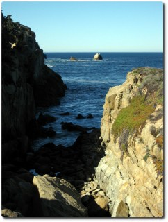 Point Lobos - North Shore Trail