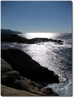 Point Lobos - South Point