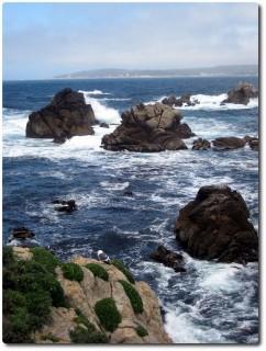 Point Lobos - rauhe See
