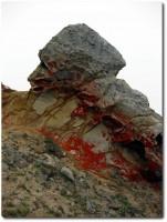 Steine und Flechten - Point Reyes