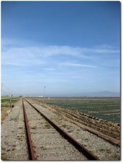 Verlassener Schienenstrang