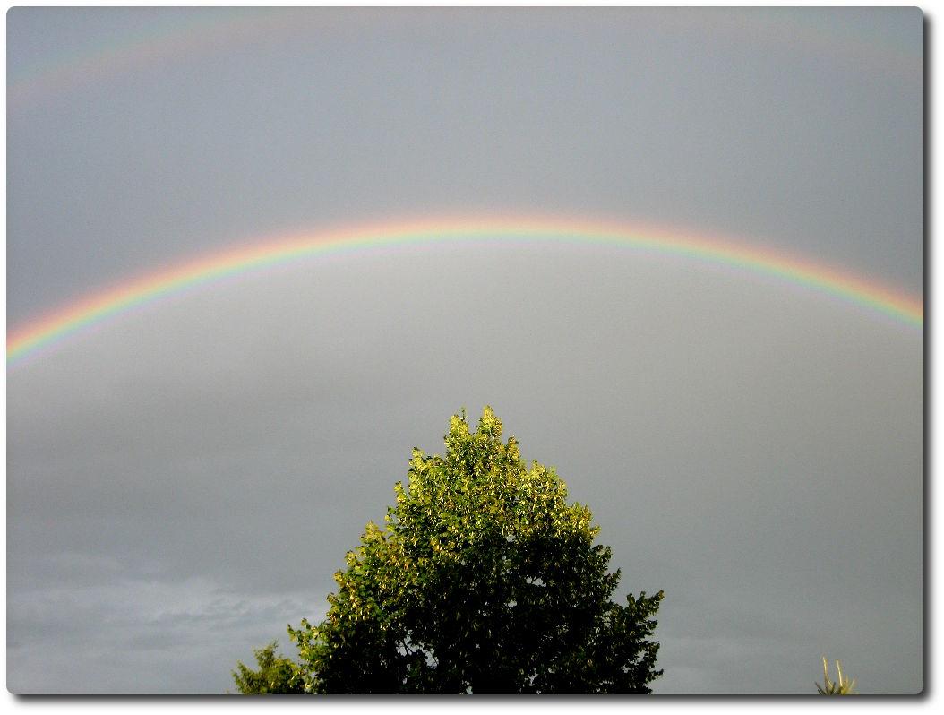 Regenbogen 01