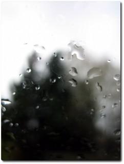 Regen den ganzen Tag
