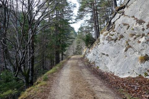 Weg Rüschgraben