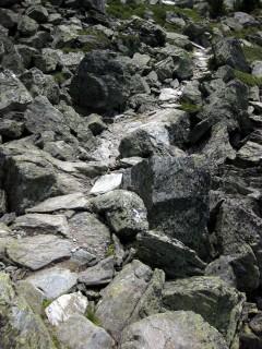 Etwas steinigere Version des Höhenweges