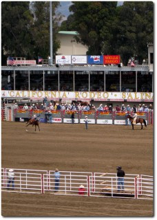 Salinas Rodeo - Horse Riding