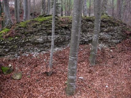 Ruine Rohrberg
