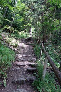 Treppenmonster beim Sagentobel