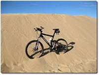 Sanddünen in Monterey
