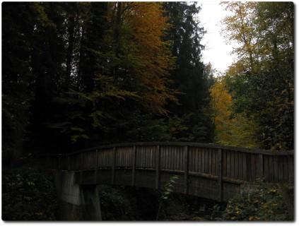 Steinibachtrail und Brücke in Hergiswil