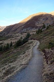 Trail Schafläger