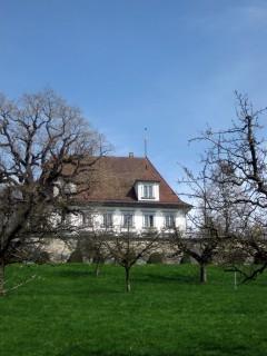 Schloss Utzigen