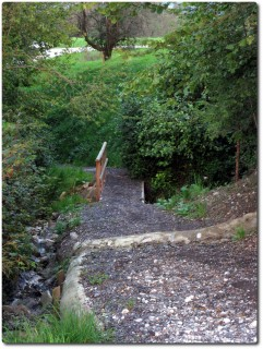 Trail den Schlund runter nach Horw